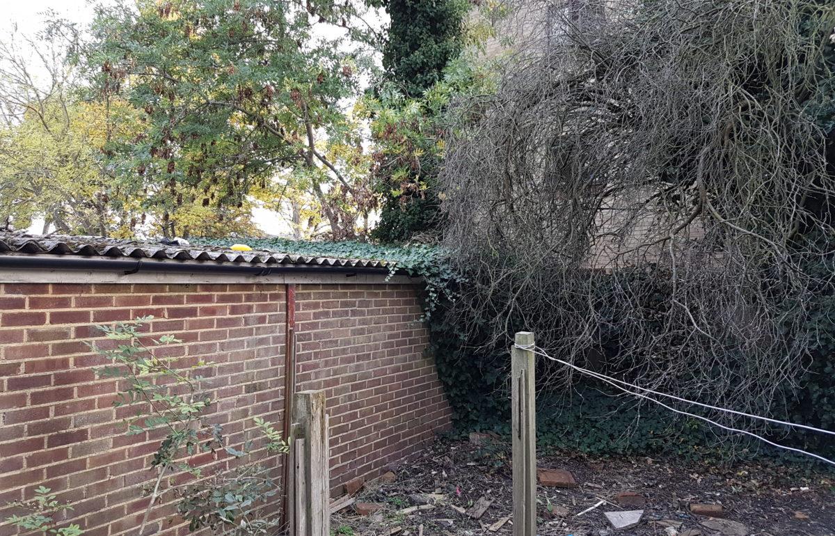 Case Study Overgrown Warrington Court